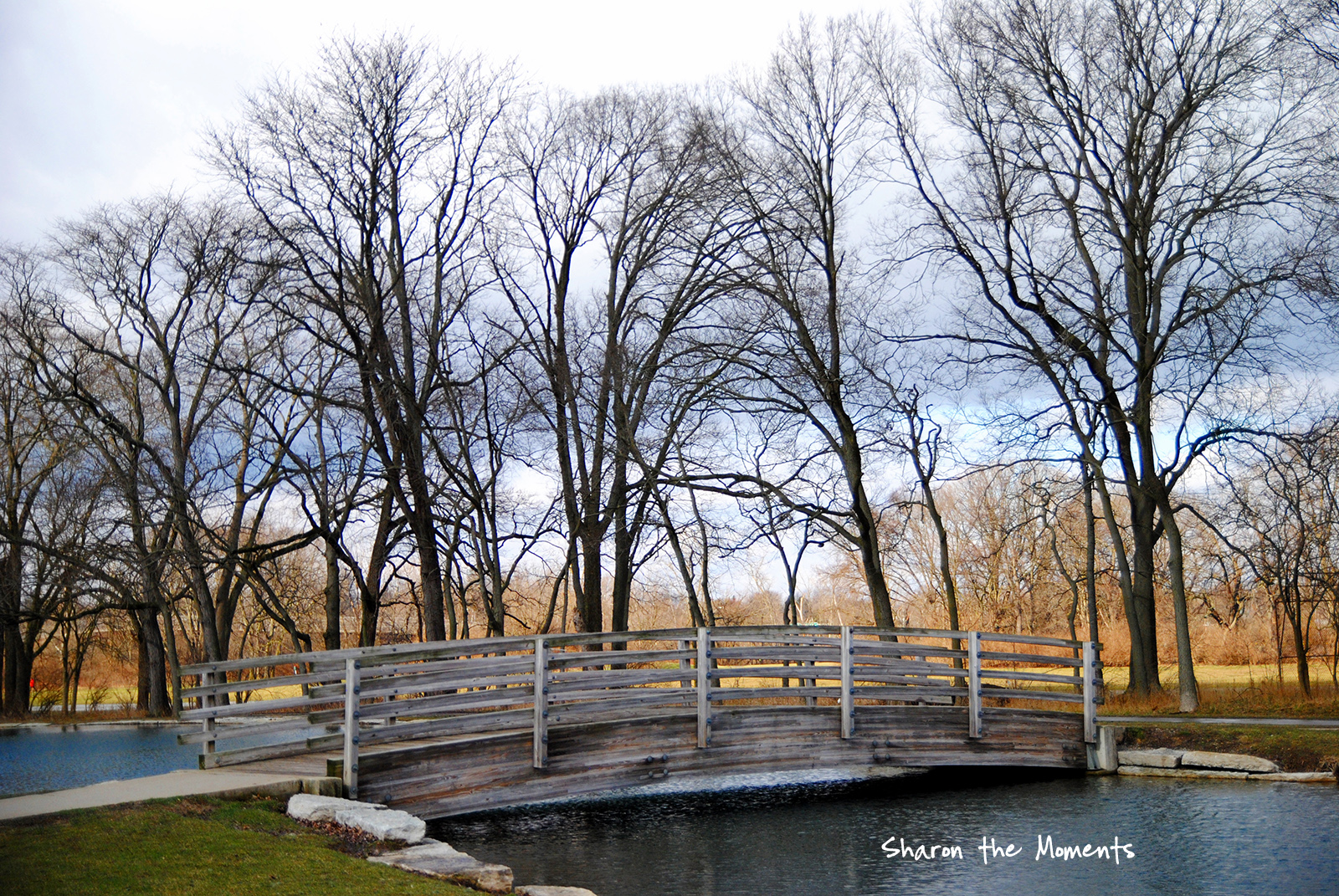 Favorite Photo Friday winter Day at Whetstone Park Columbus|Sharon the Moments blog