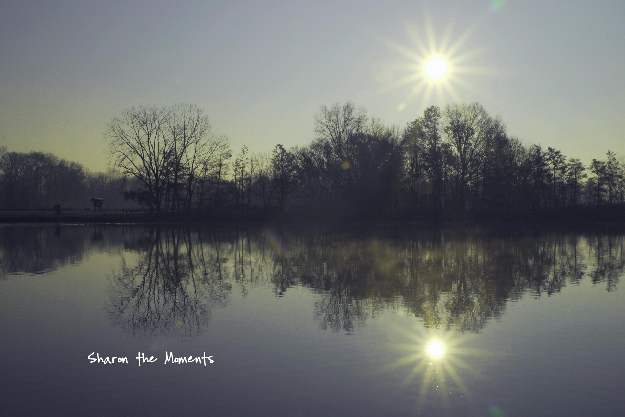 Favorite Photo Friday at Sharon Woods Schrock Lake|Sharon the Moments blog