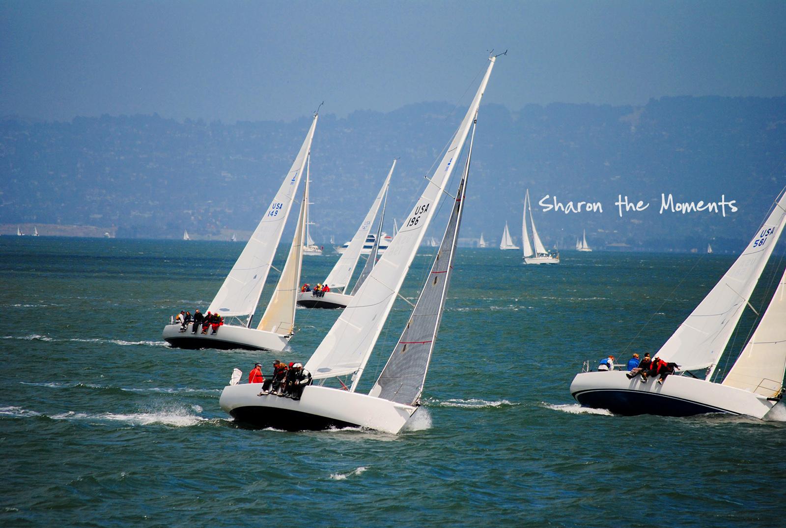 Favorite Photo Friday San Francisco Bay Area|Sharon the Moments blog