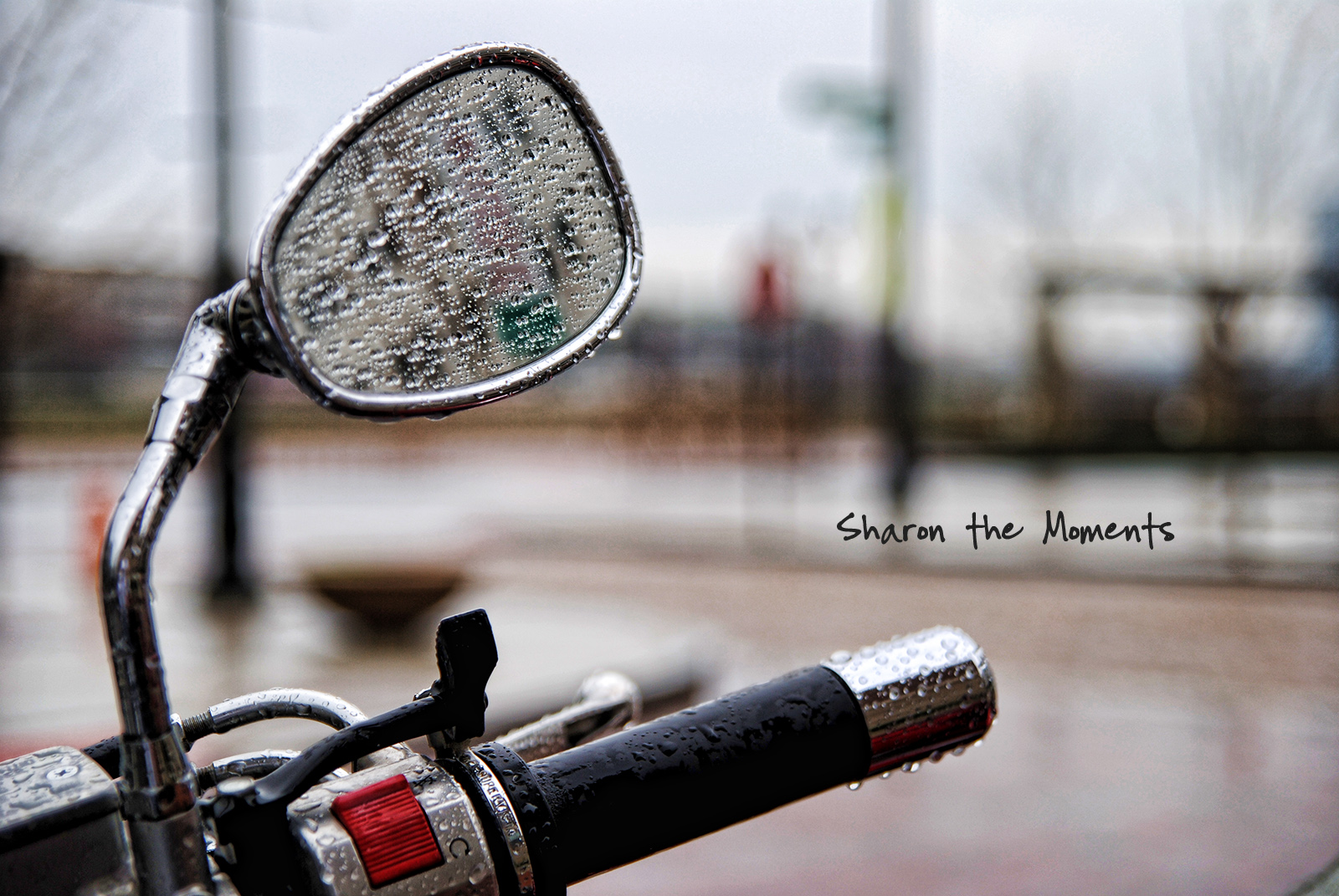 Monday Monday Spring Downtown Columbus Scioto Mile|Sharon the Moments blog