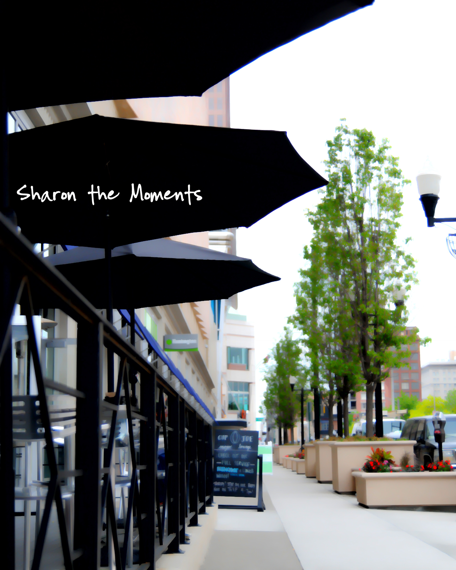 Favorite Photo Friday Downtown Columbus|Sharon the Moments blog
