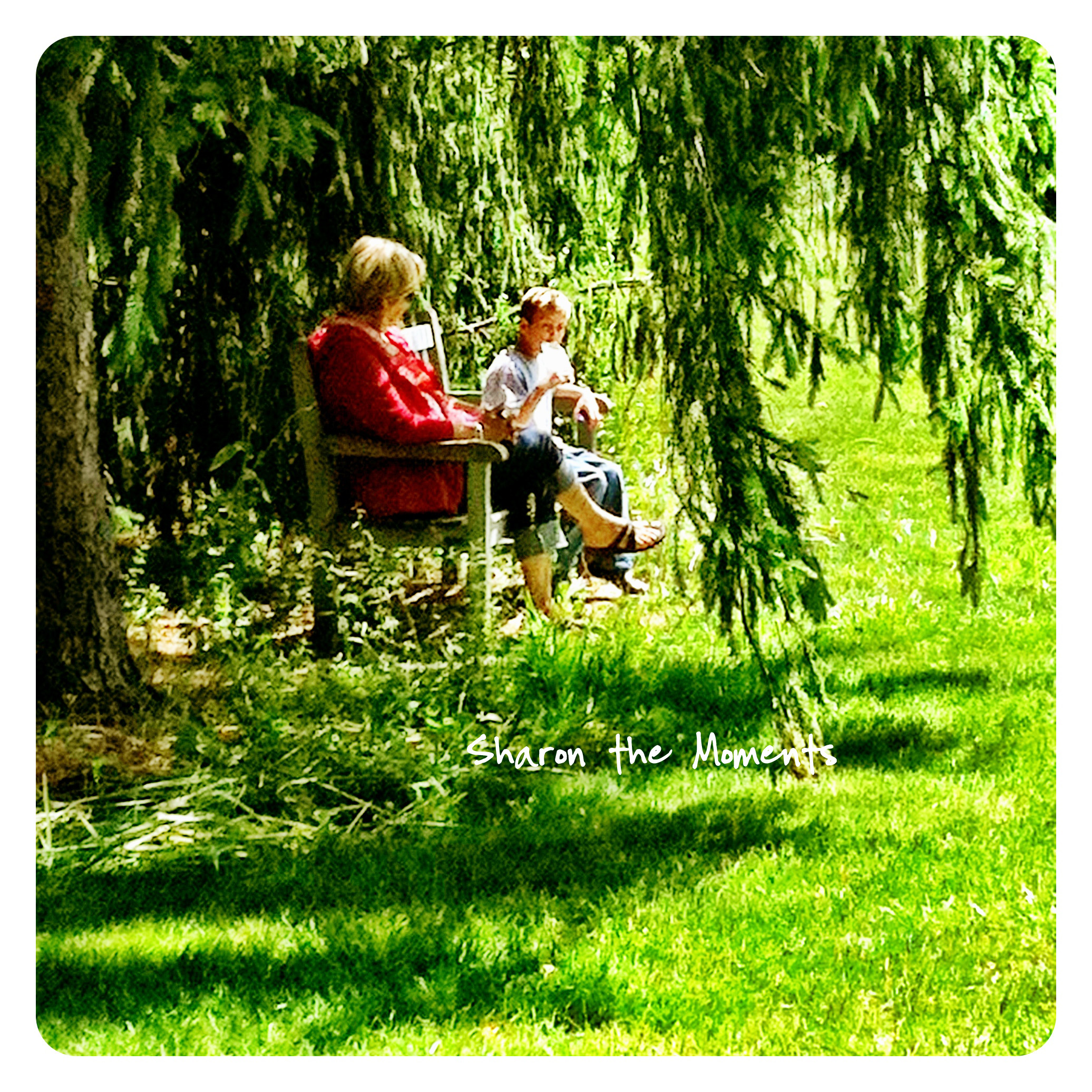 iPhoneography for Relaxing Sunday Mornings Inniswood Metro Park|Sharon the Moments blog