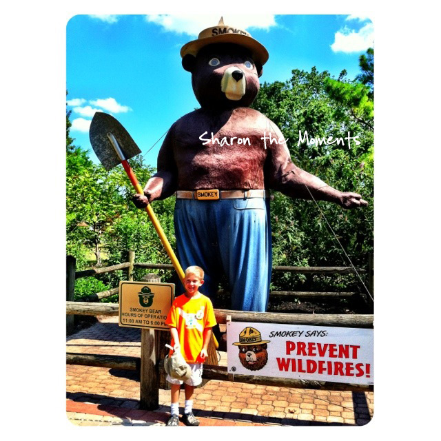 Ohio State Fair Smokey the Bear in the Ohio Dept of Natural Resources area|Sharon the Moments blog
