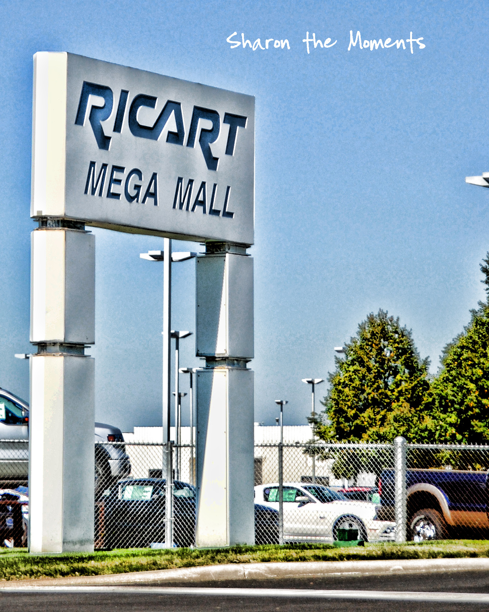 Blog Event at Ricart Automotive Auto Mall Columbus Ohio .. We're Dealin!|Sharon the Moments blog