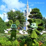 Walt Disney World Magic Kingdom Sharon the Moments Blog