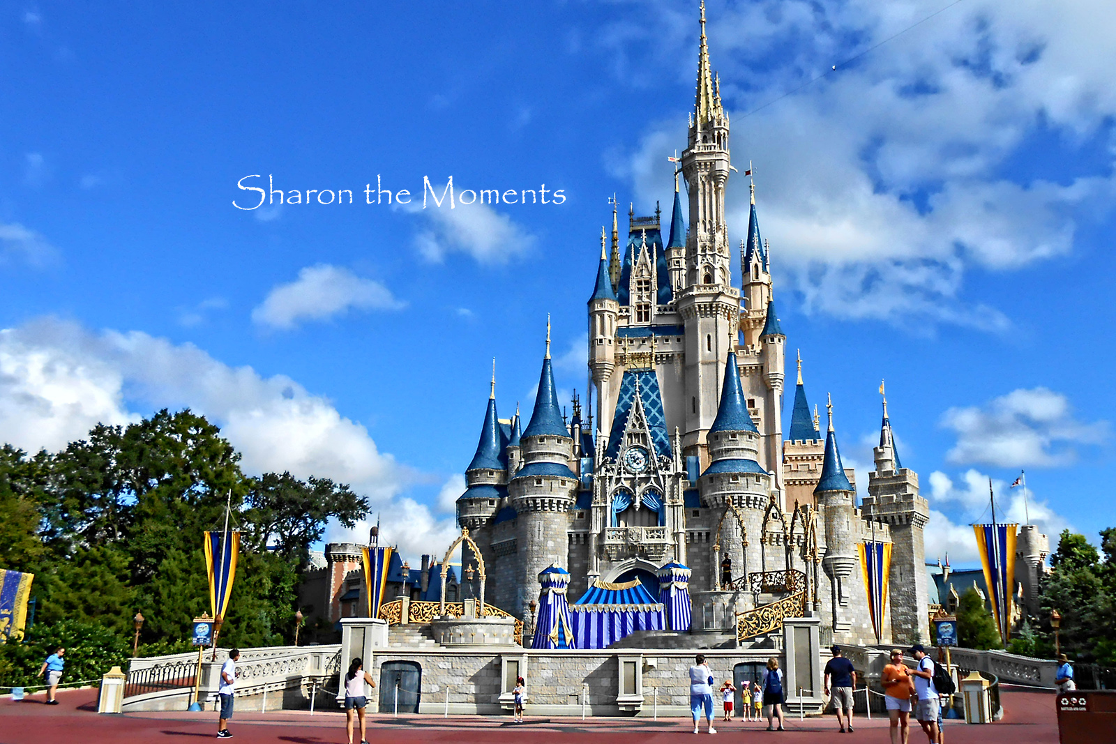 Walt Disney World Magic Kingdom || Sharon the Moments Blog