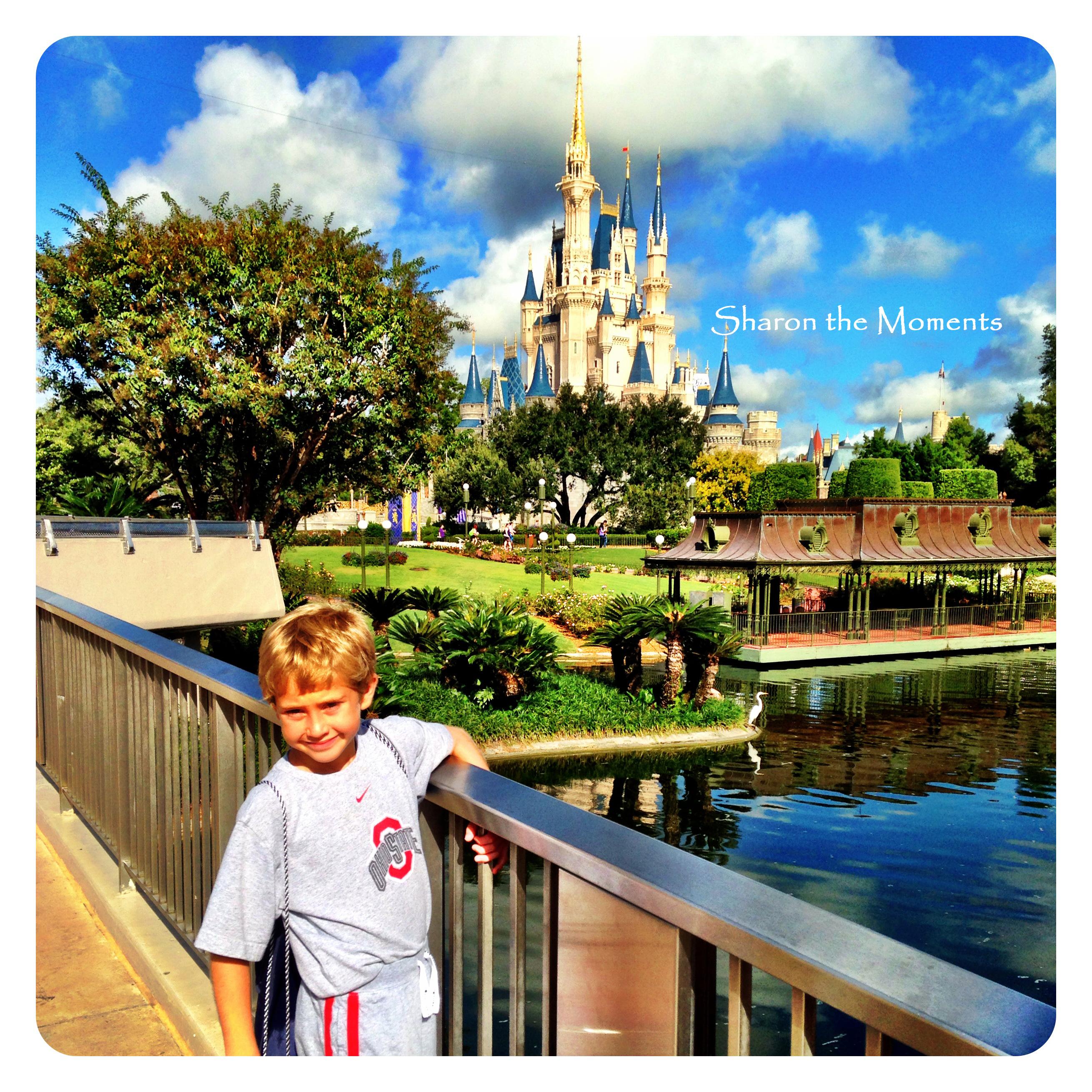 Walt Disney World All Star Sports Resort|Sharon the Moments Blog