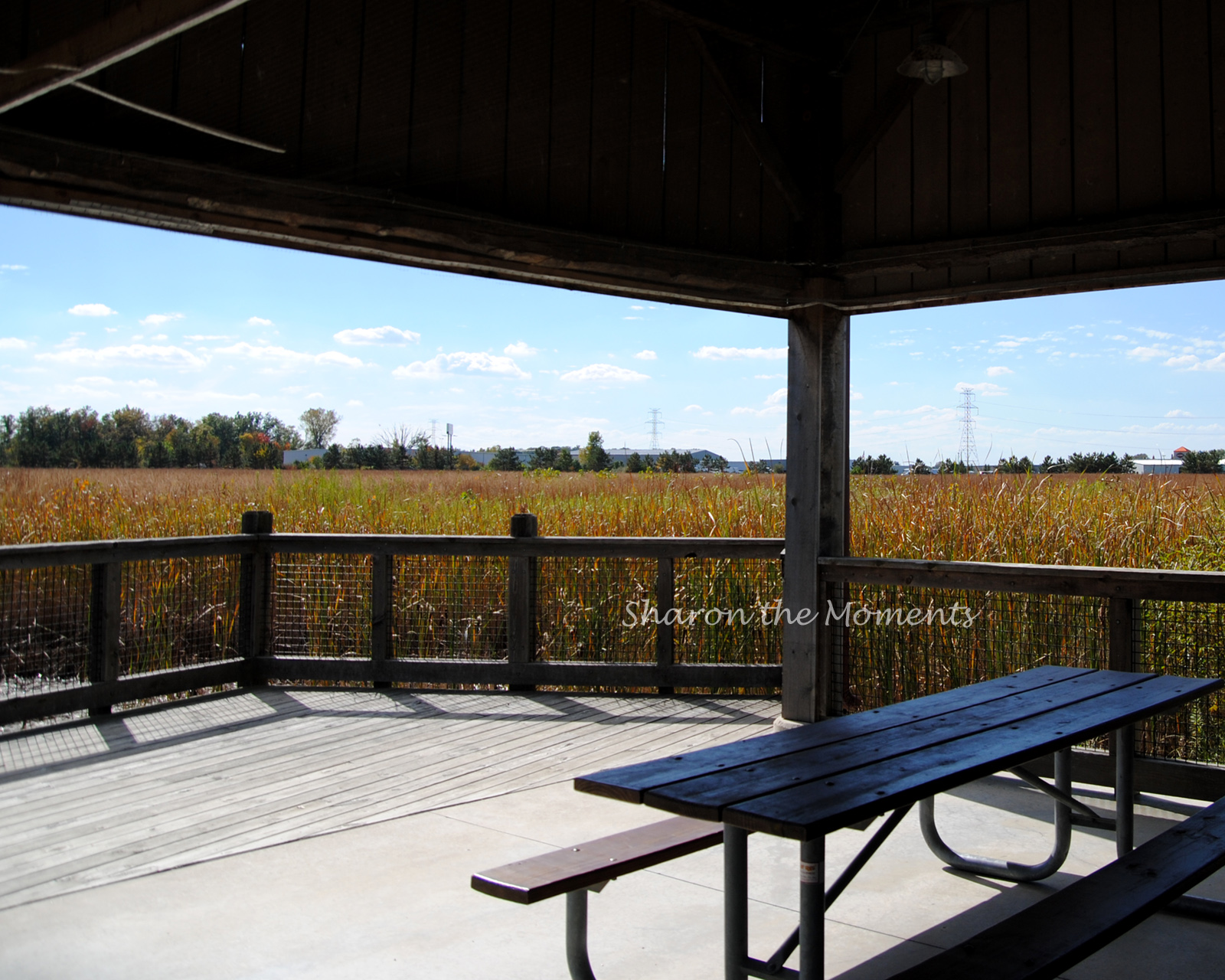 Loving Sunday at Glacier Ridge Metro Park|Sharon the Moments Blog