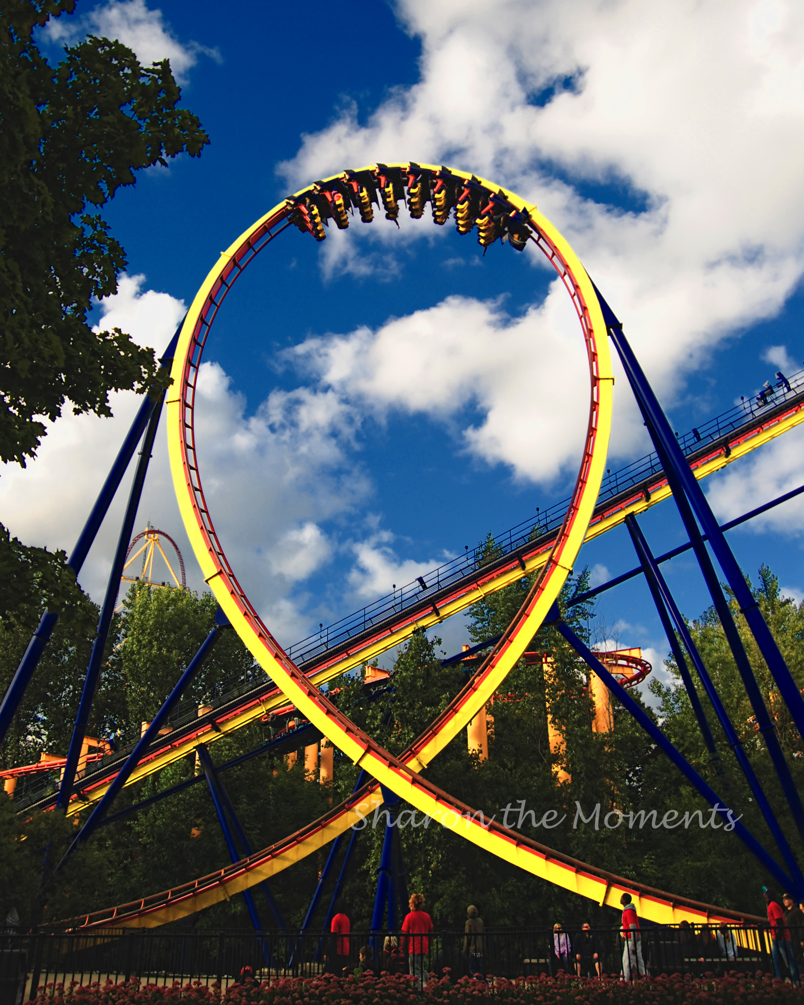 Favorite Photo Friday in Cedar Point Sandusky Ohio Mantis|Sharon the Moments Blog