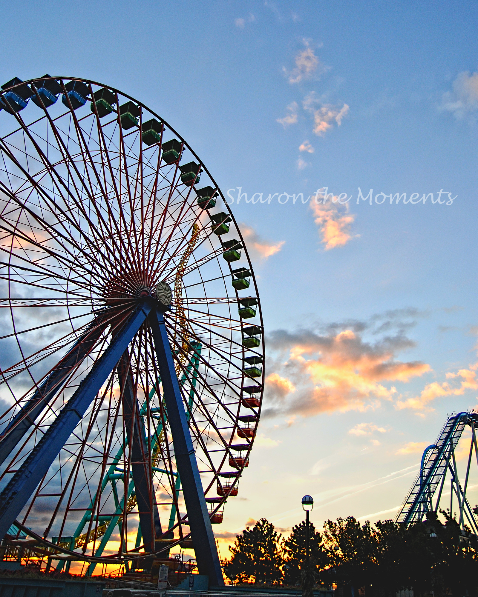Favorite Photo Friday in Cedar Point Sandusky Ohio Giant Ferris Wheel|Sharon the Moments Blog