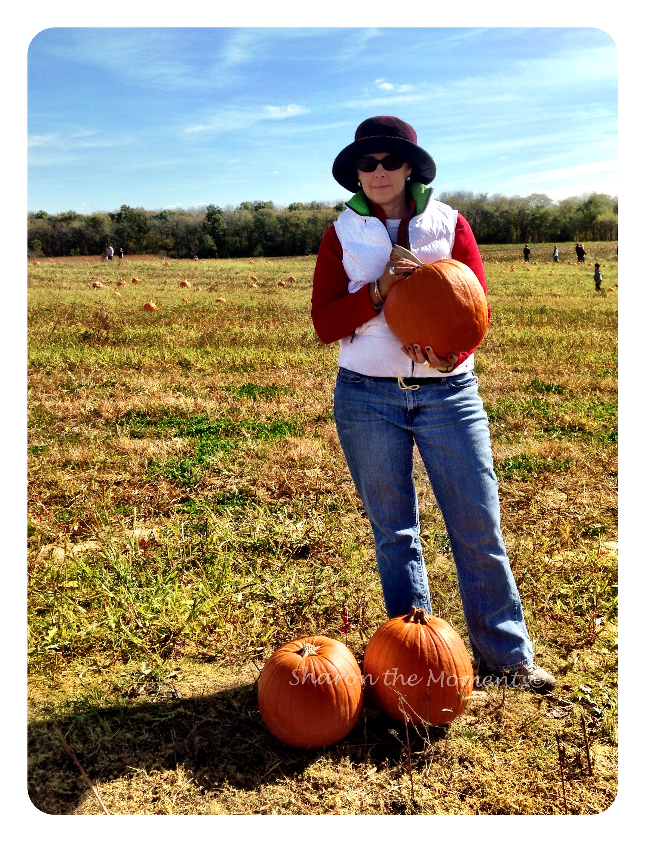 Pumpkin Patch Visit To Hidden Creek Farms|Sharon the Moments Blog