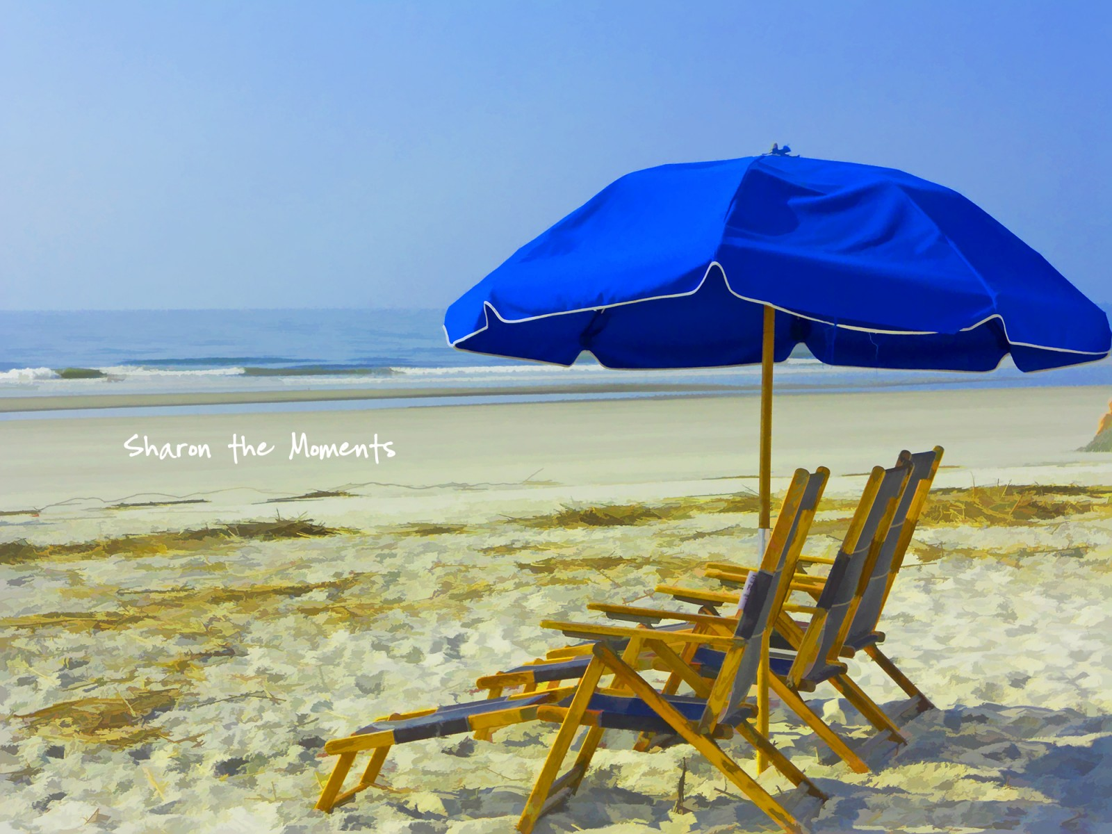 Twenty Things to do on Florida's Gulf Coast| Sharon the Moments Blog